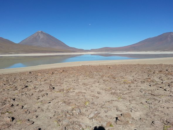 lagoon du parc sajama en bolivie