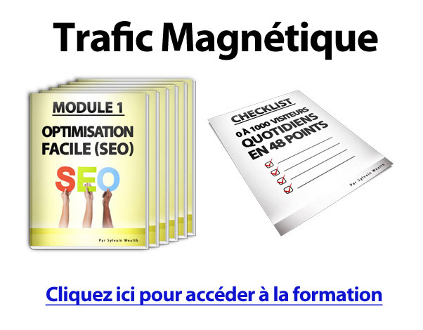 traficmagnetique
